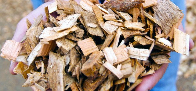 BiomassChips