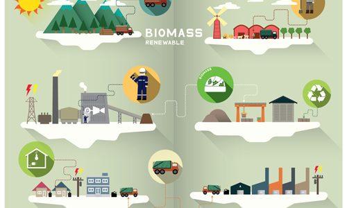 biomass graphic