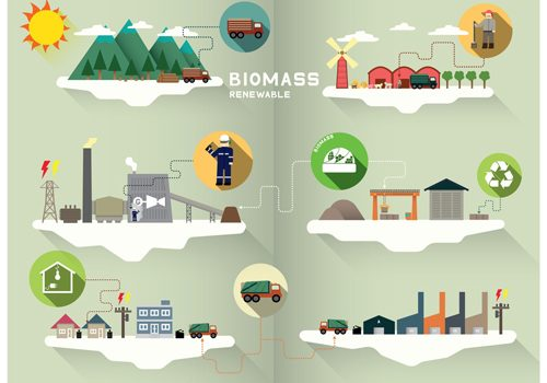 biomass graphic